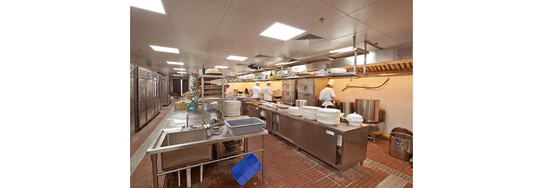 Commercial-Restaurant-Pest-Control-SWAT-Environmental