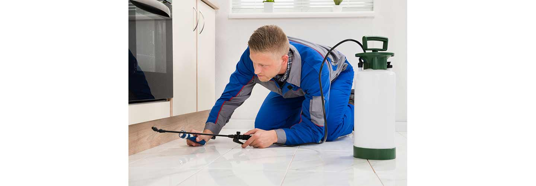 Residential-Pest-Control-SWAT-Environmental